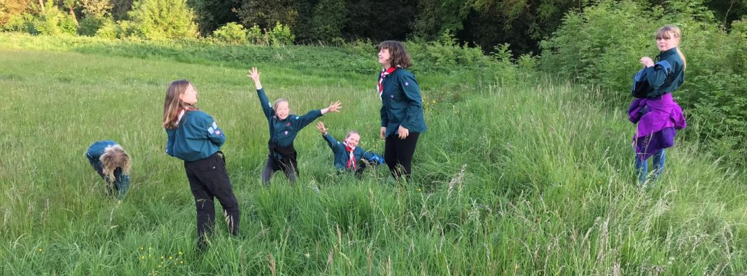 Bristol Cabot Scouts girls in field